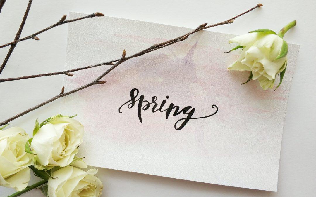 Spring & Summer 2019 Newsletter